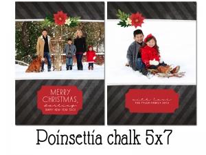 Poinsettia_Chalk_5x7.jpg